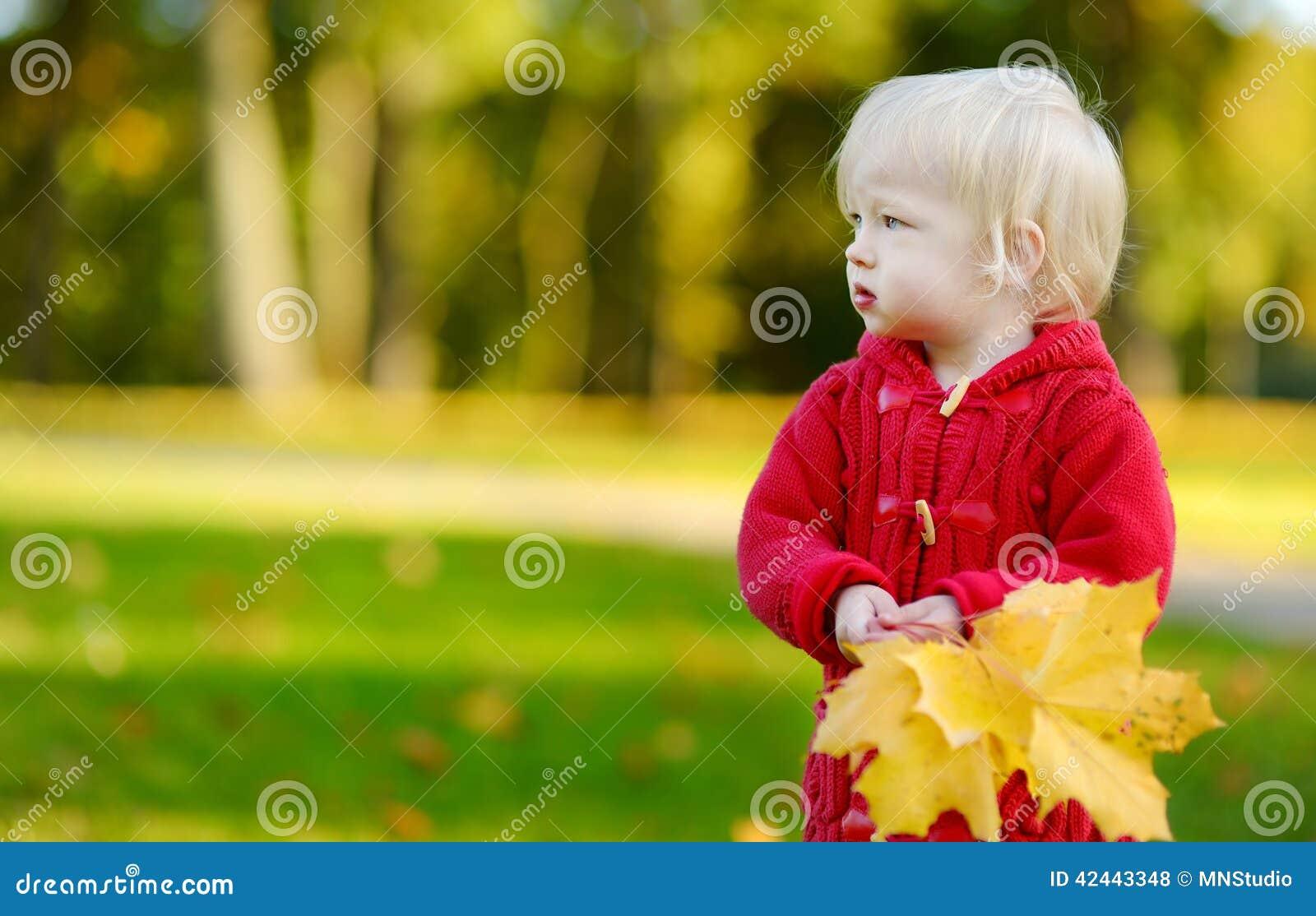 Niña pequeña adorable que sostiene las hojas de arce amarillas