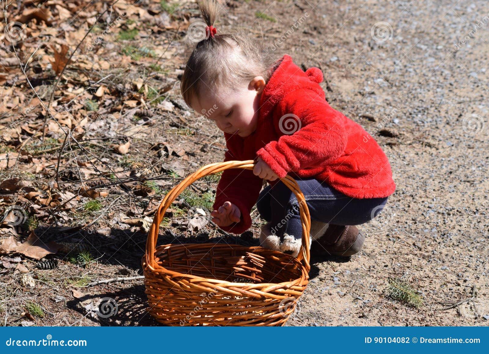 Niña pequeña que recolecta a la cesta