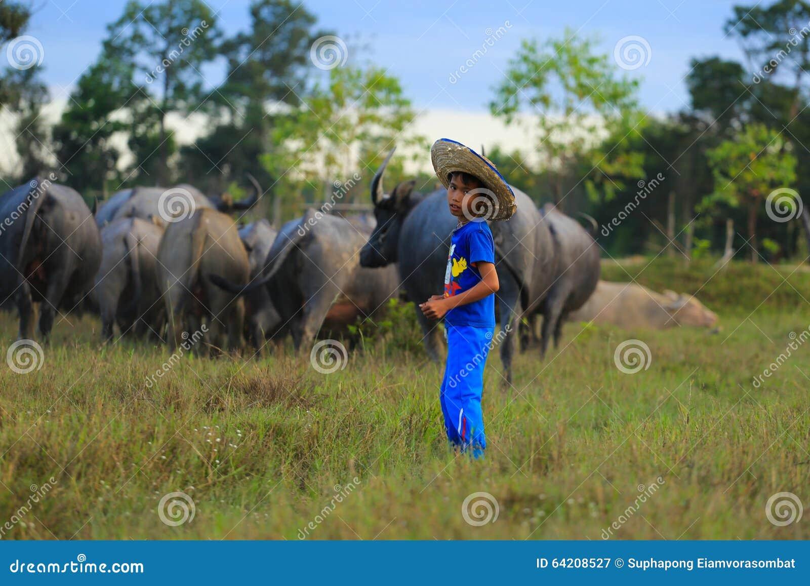 Niño con su búfalo