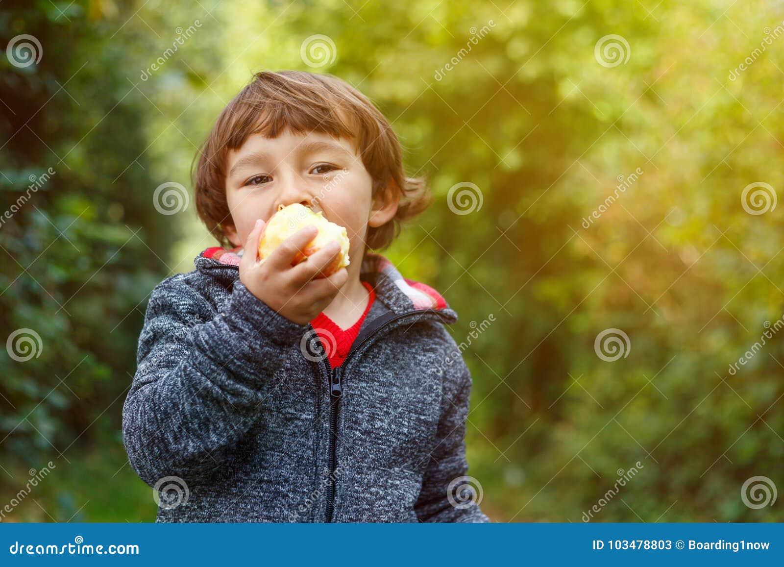 Niño del niño del niño pequeño que come el copyspace GA de la caída del otoño de la fruta de la manzana