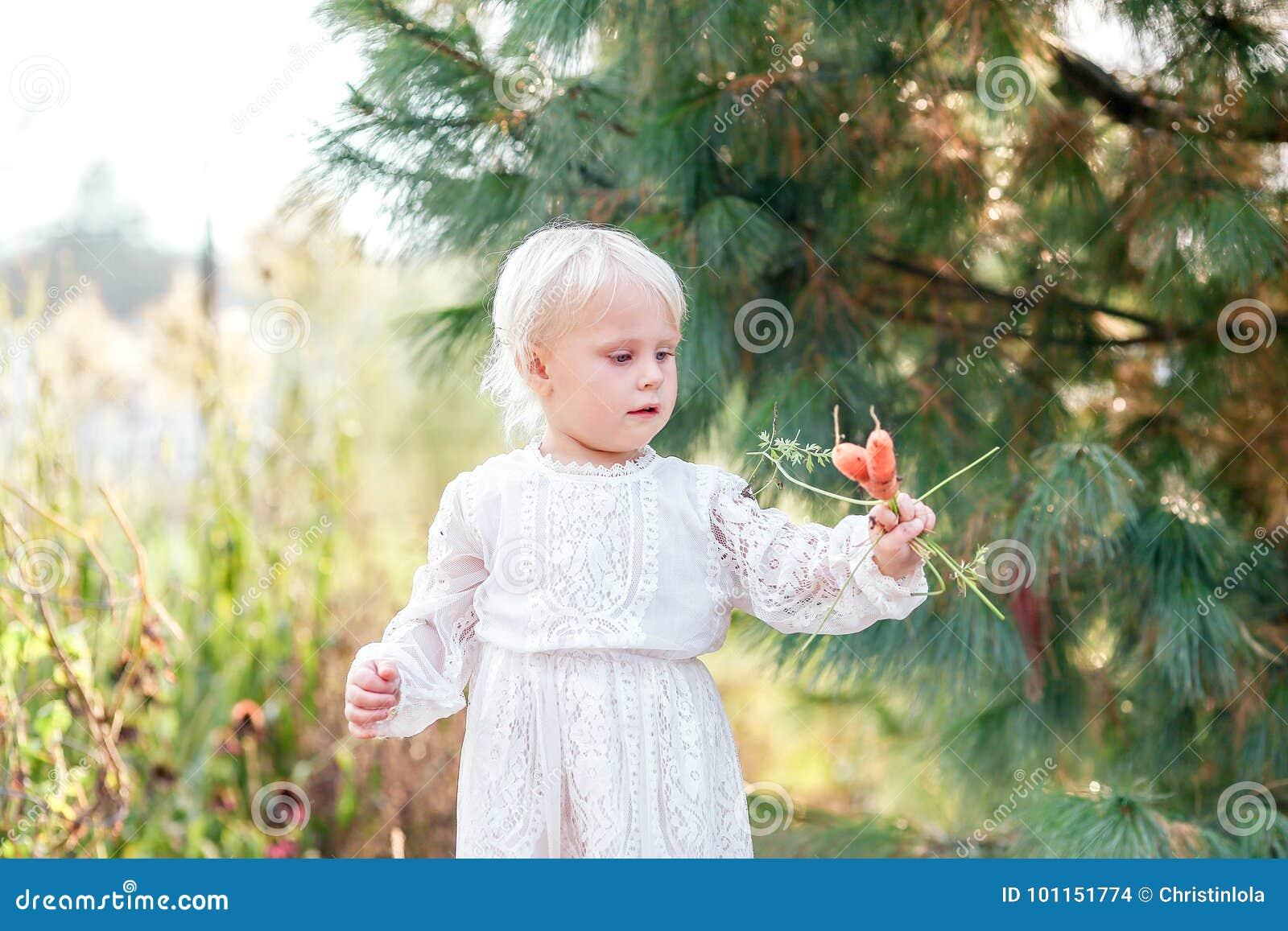 d229f71939 Un pequeño niño de 2 años lindo de la muchacha está sosteniendo zanahorias  frescas que ella acaba de cosechar de su huerto del verano del patio trasero