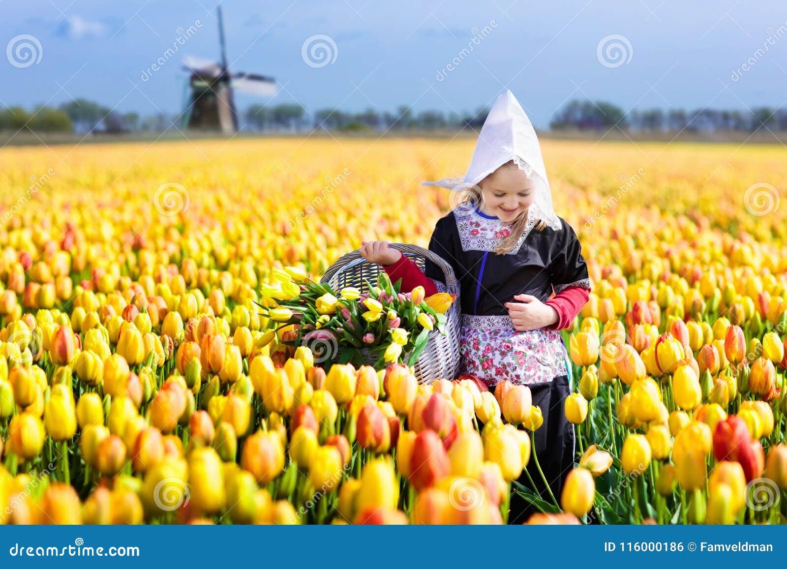 Niño en campo de flor del tulipán Molino de viento en Holanda