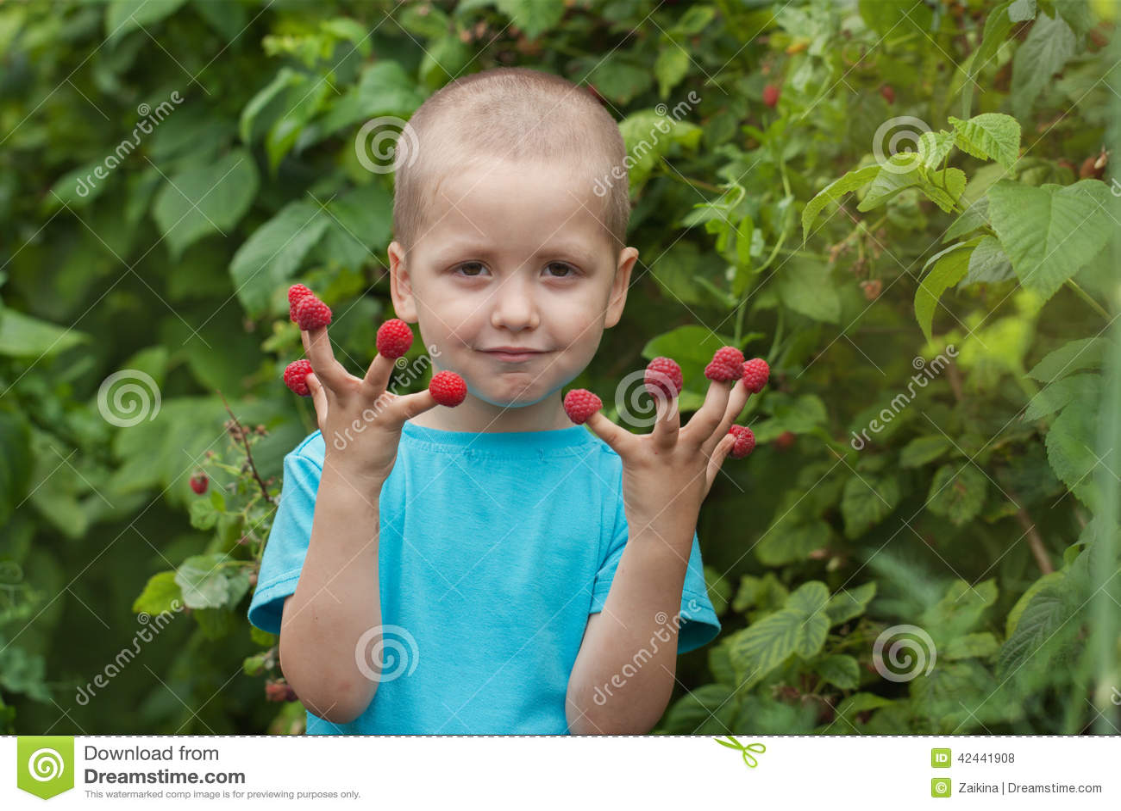 Niño feliz del retrato pequeño con la frambuesa al aire libre