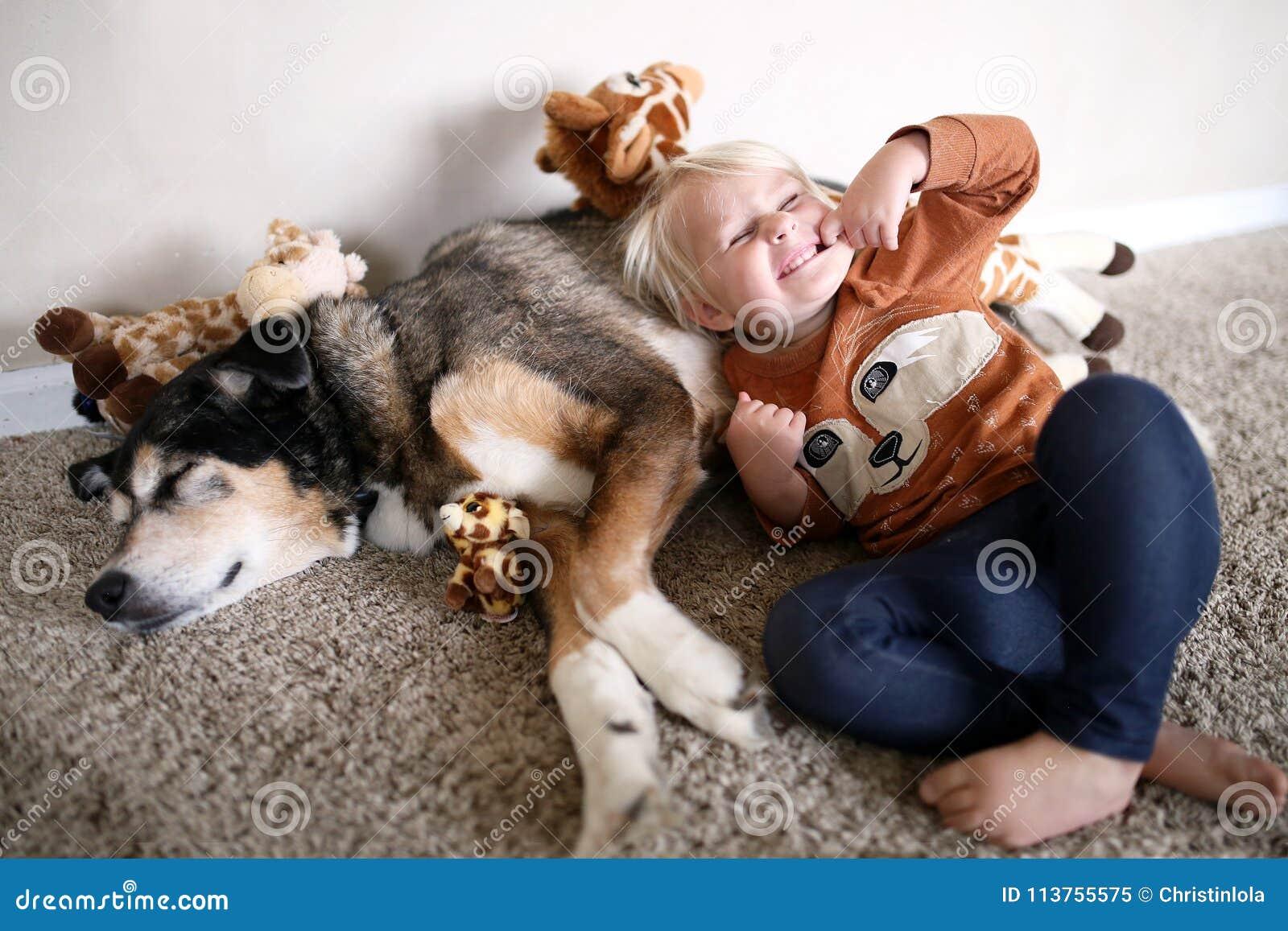 Niño joven que juega con su pastor alemán Dog del animal doméstico y la  jirafa 37dfd05d2ea