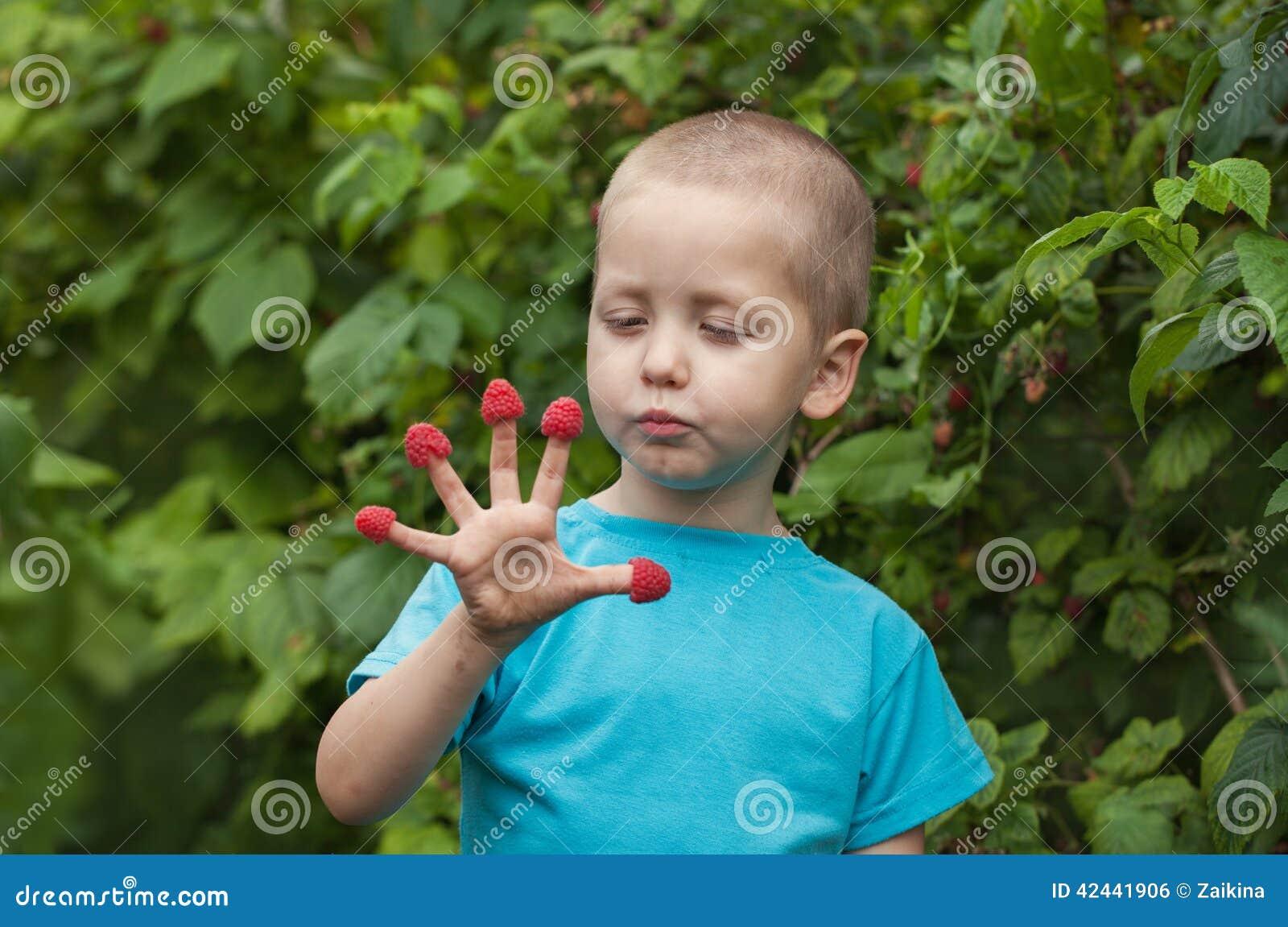 Niño pequeño del retrato que come las frambuesas de sus fingeres