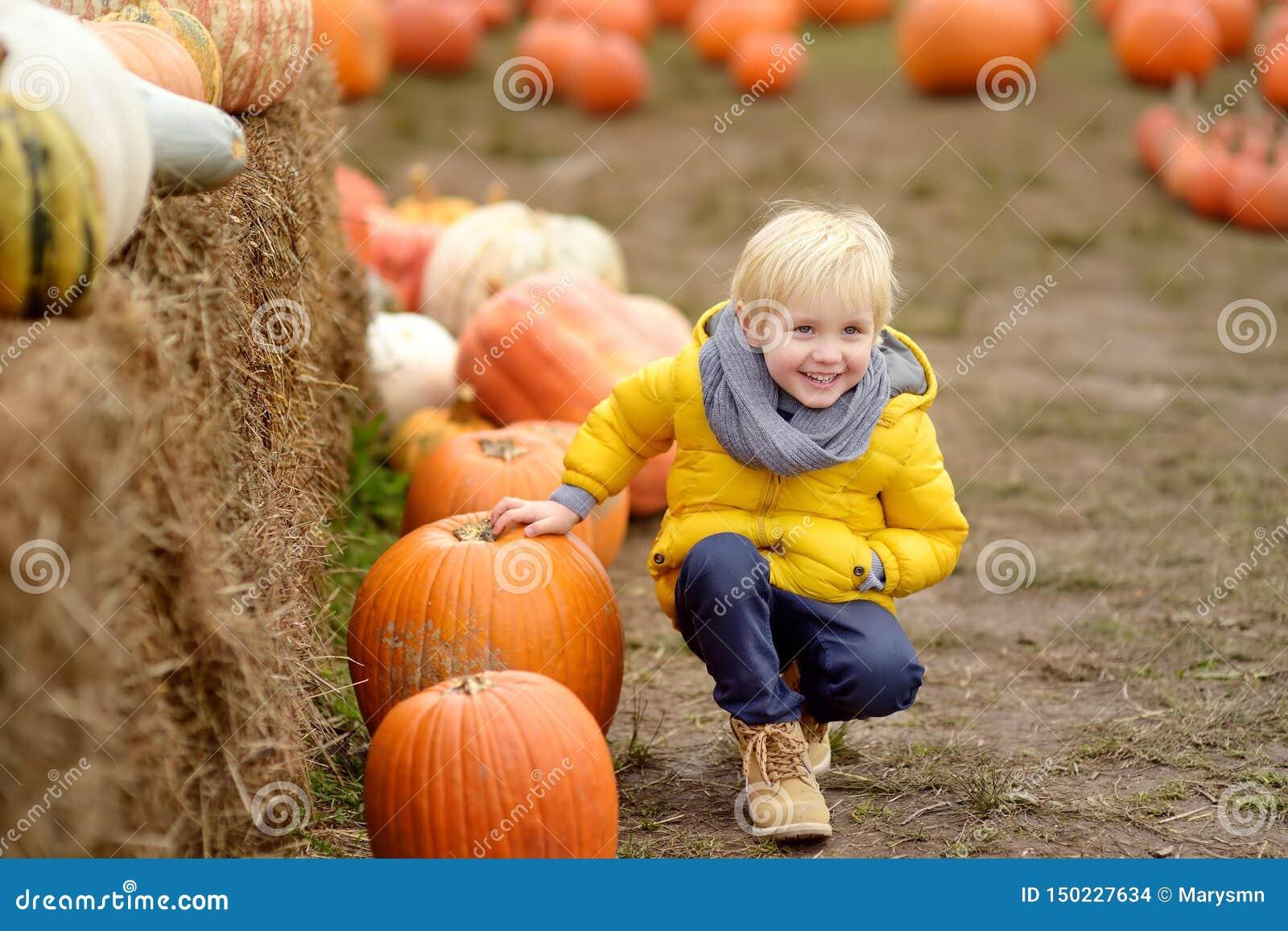 Niño pequeño en un viaje de una granja de la calabaza en el otoño Niño que se sienta cerca de la calabaza gigante