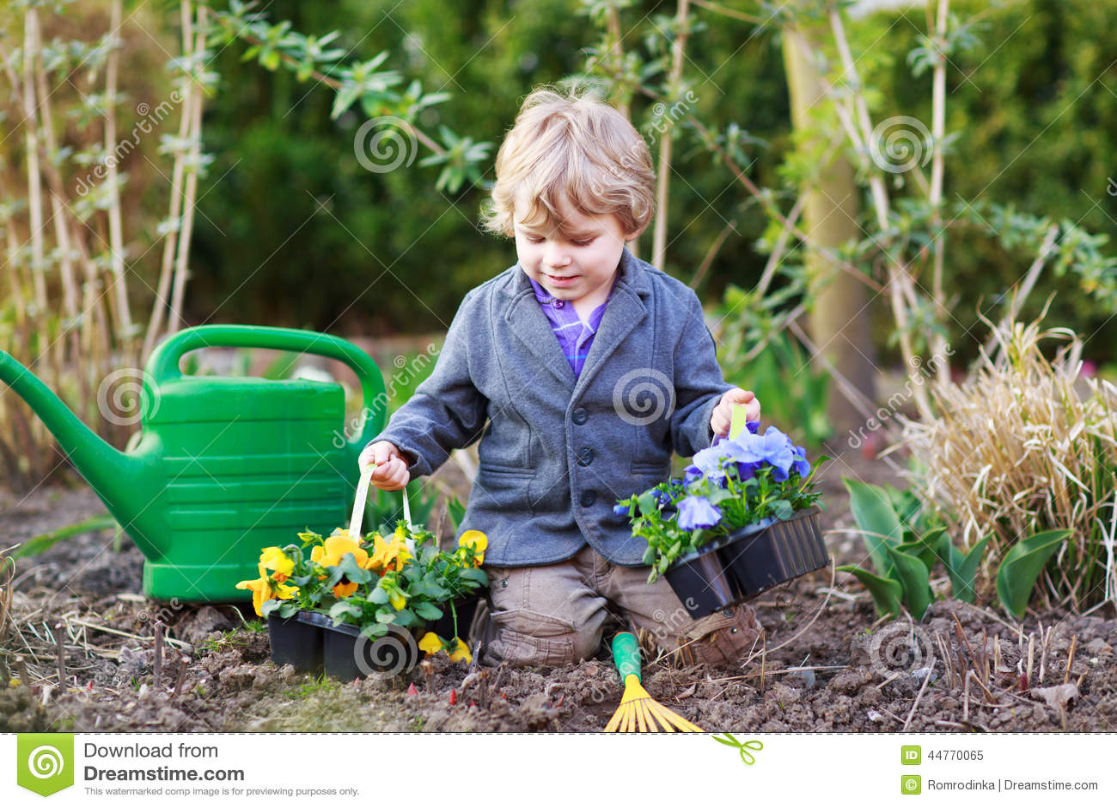 Ni o peque o que cultiva un huerto y que planta las flores - Foto nino pequeno ...