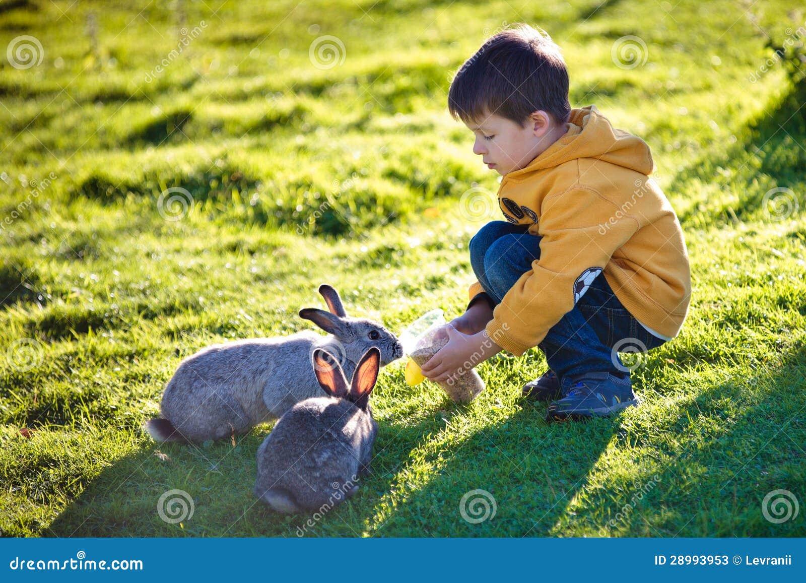 Ni o peque o que introduce dos conejos en granja fotos de - Foto nino pequeno ...