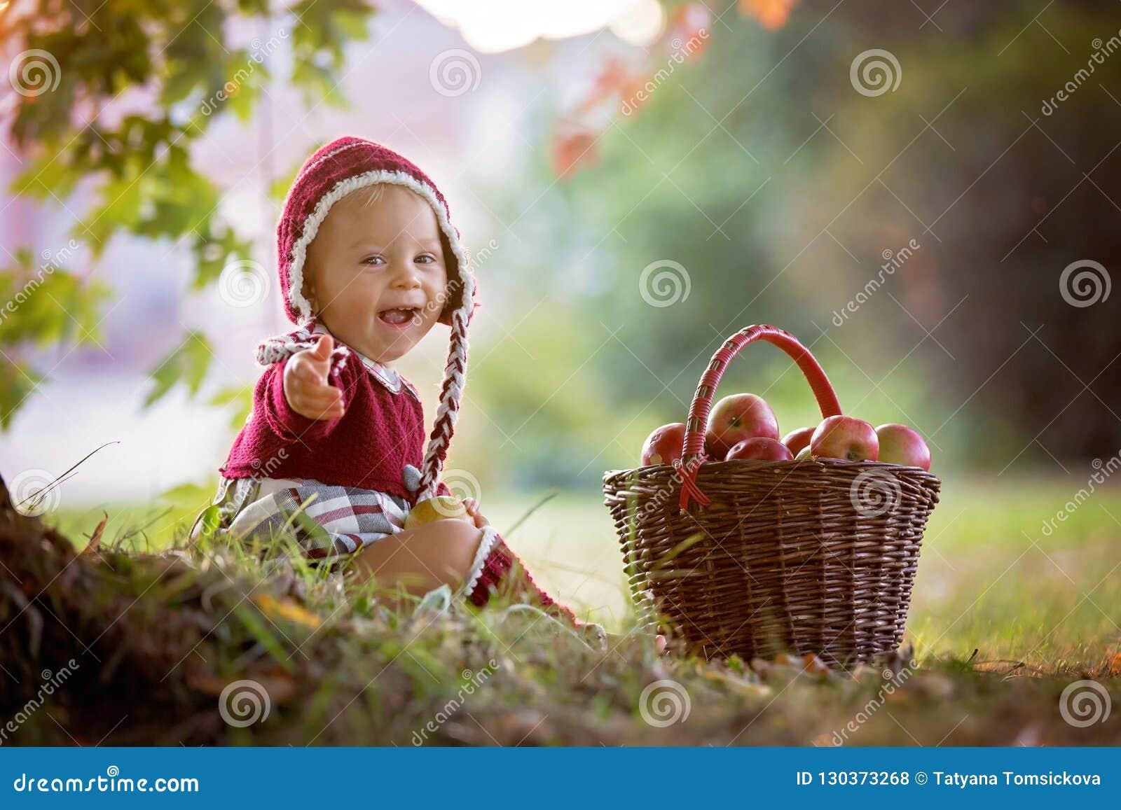 Niño que come manzanas en un pueblo en otoño Pequeño juego del bebé