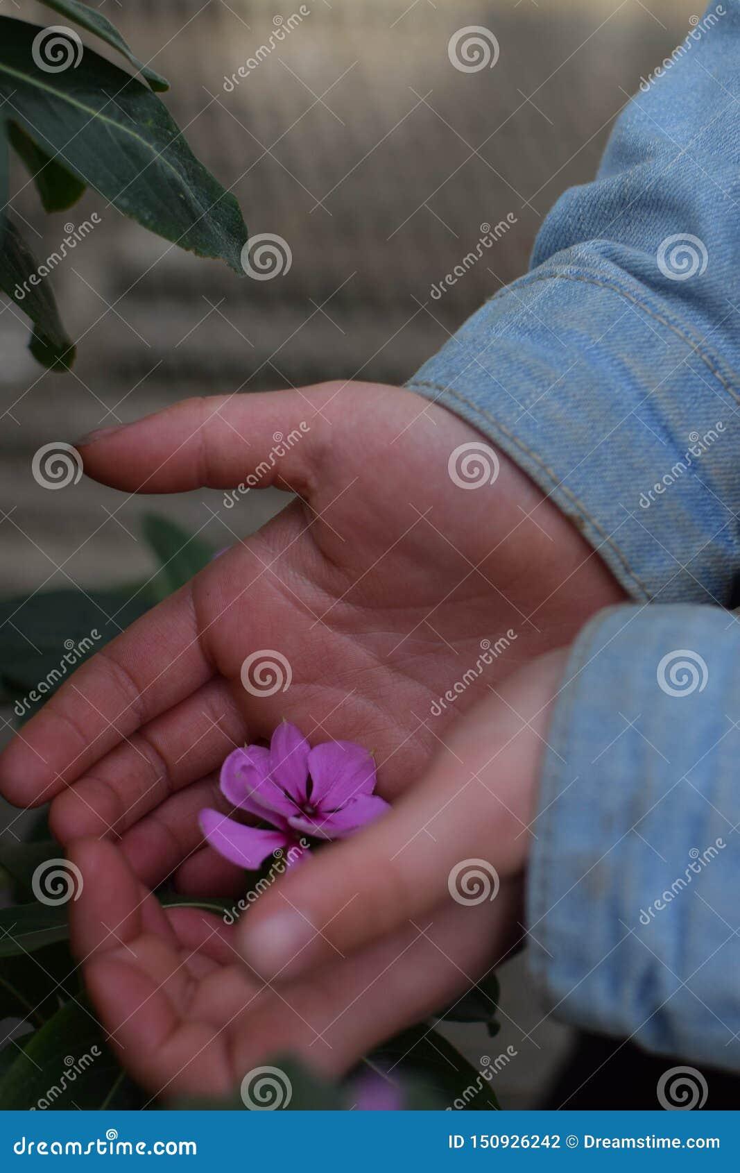 Niño que sostiene una flor púrpura en sus manos