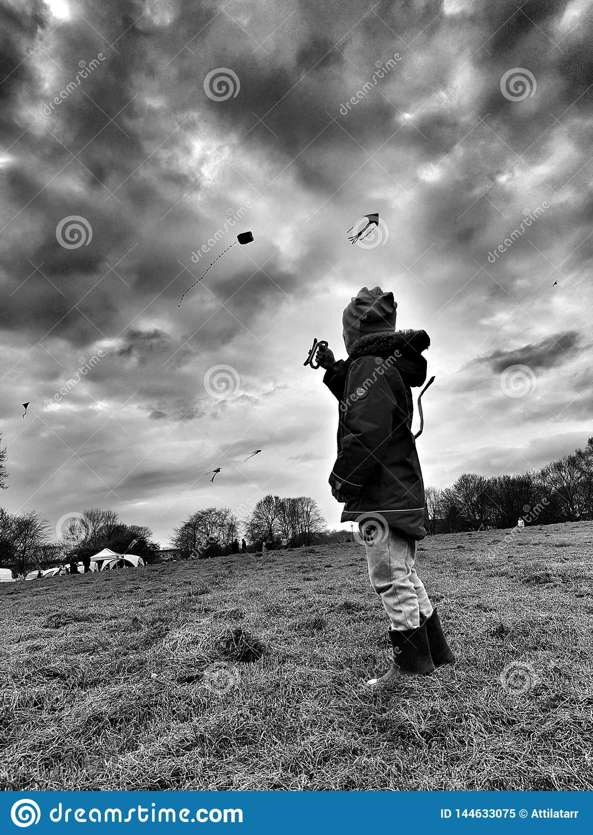 Niño que vuela una cometa en un parque