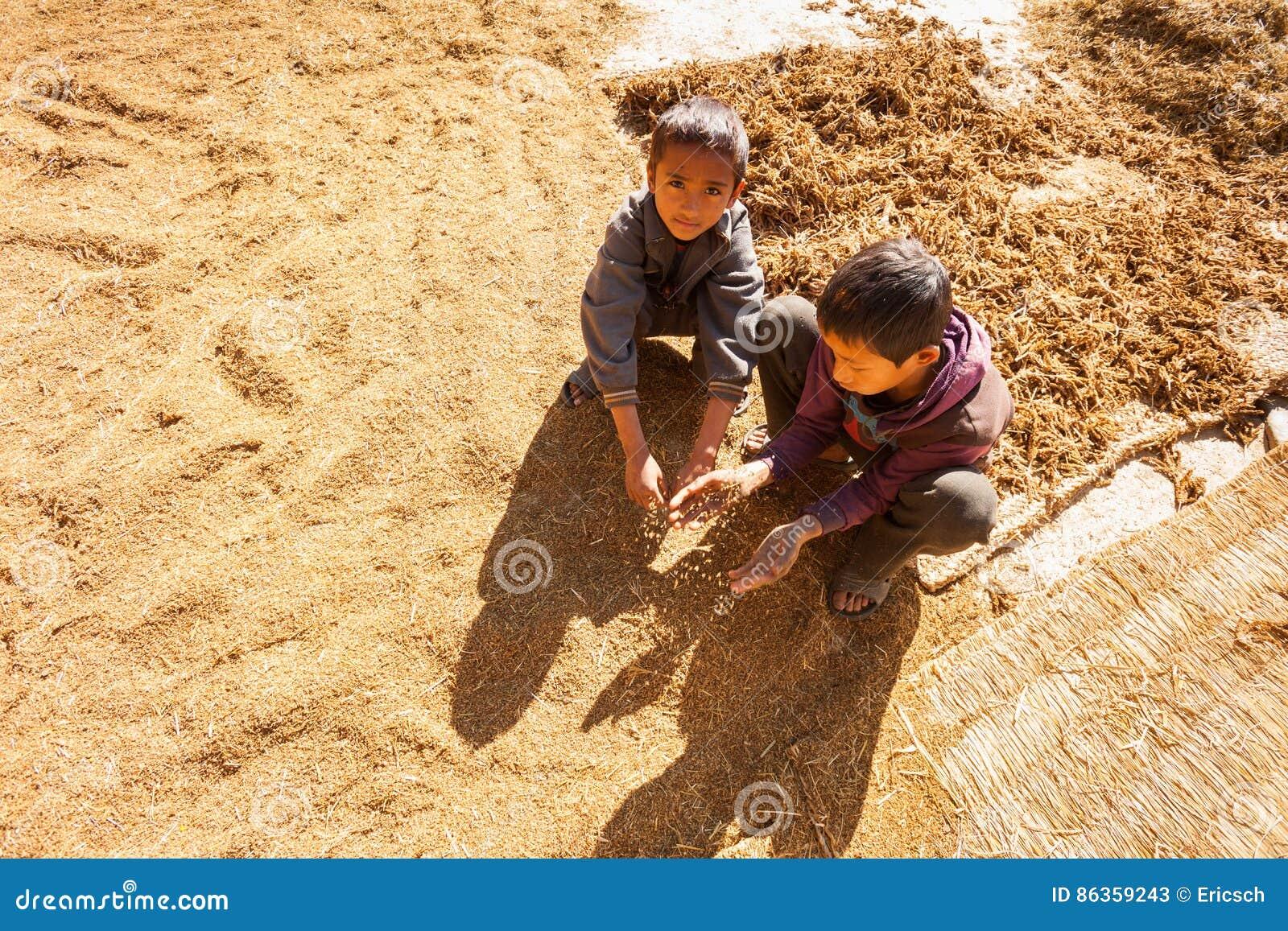 Niños de la granja del Nepali
