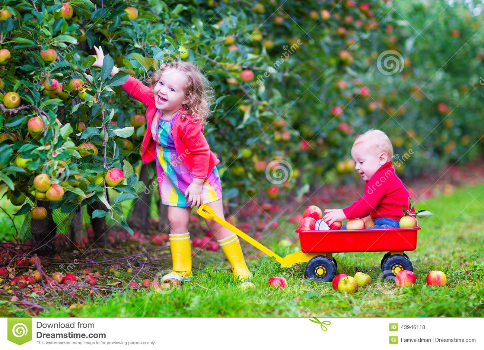 Niños que juegan en un jardín de la manzana