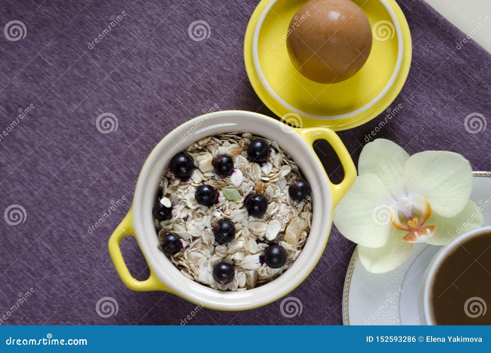 ?niadanie w ? odgórny widok na tacy oatmeal w żółtym garnku, muesli z świeżymi czarnymi jagodami, jajko, kawa z mlekiem w górę