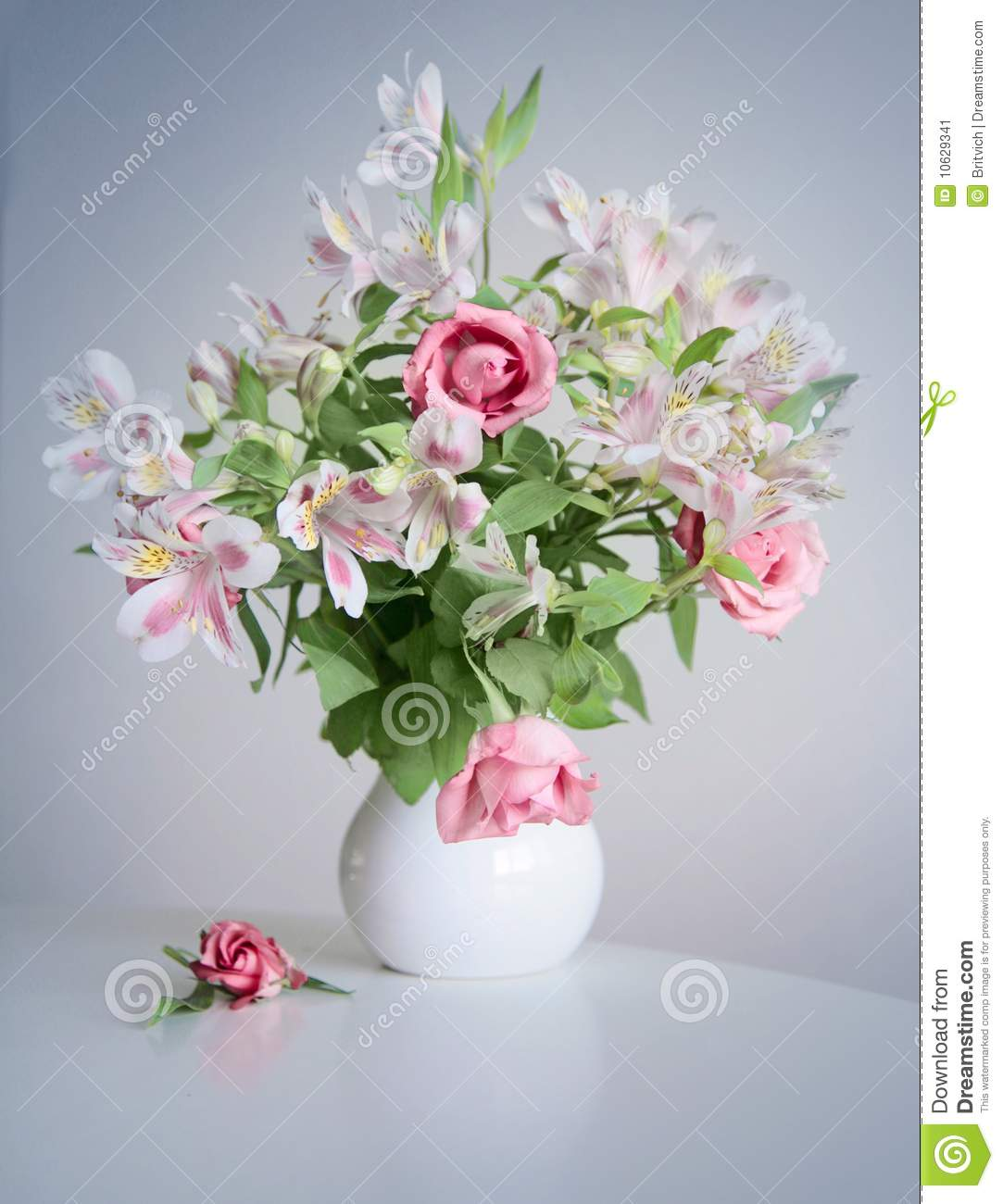 nice flowers stock image  image, Beautiful flower