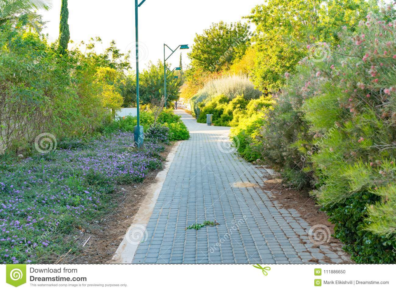 Nice Garden Path View With Grass And Trees Stock Photo Image Of