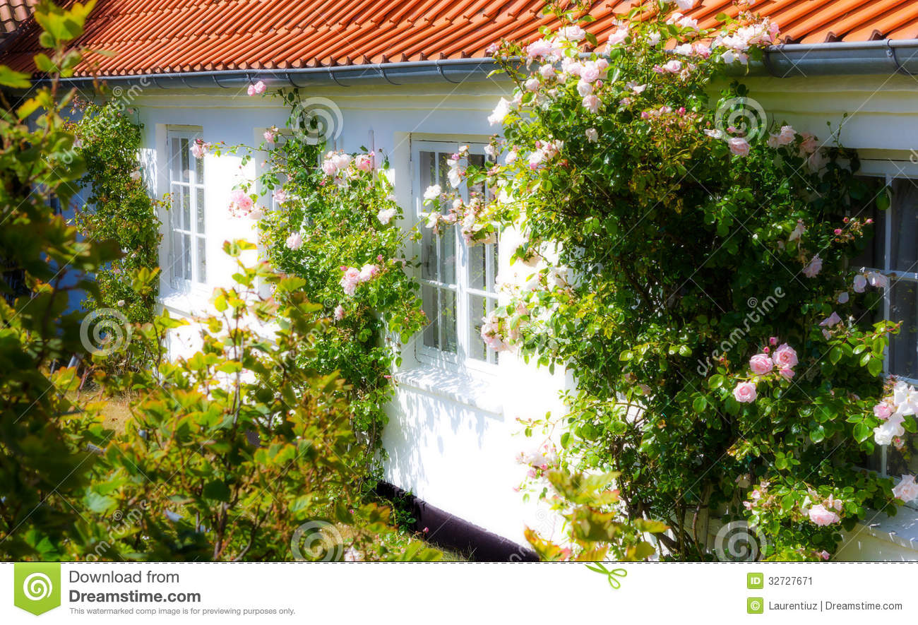 Nice garden stock image image of home architecture for Nice garden