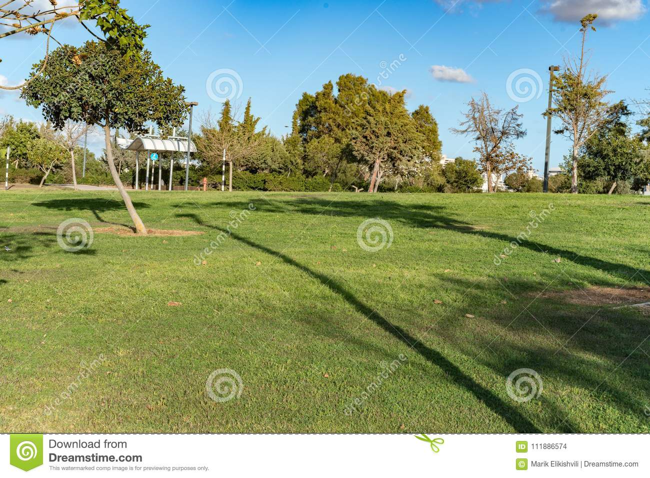 Nice Garden View With Grass And Trees Stock Photo Image Of Trees