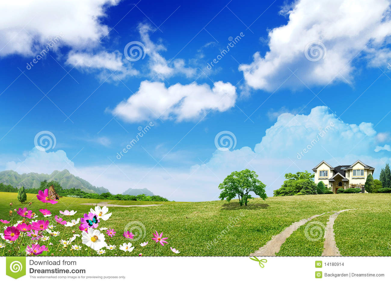 Nice House On Green Field Stock Photo. Image Of Office