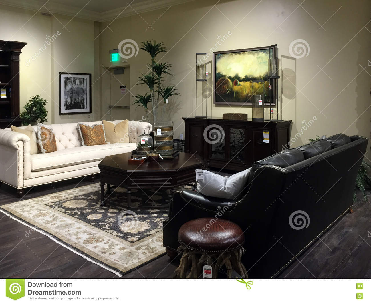 Nice Chairs For Living Room: Nice Sofa Selling At Store Editorial Image
