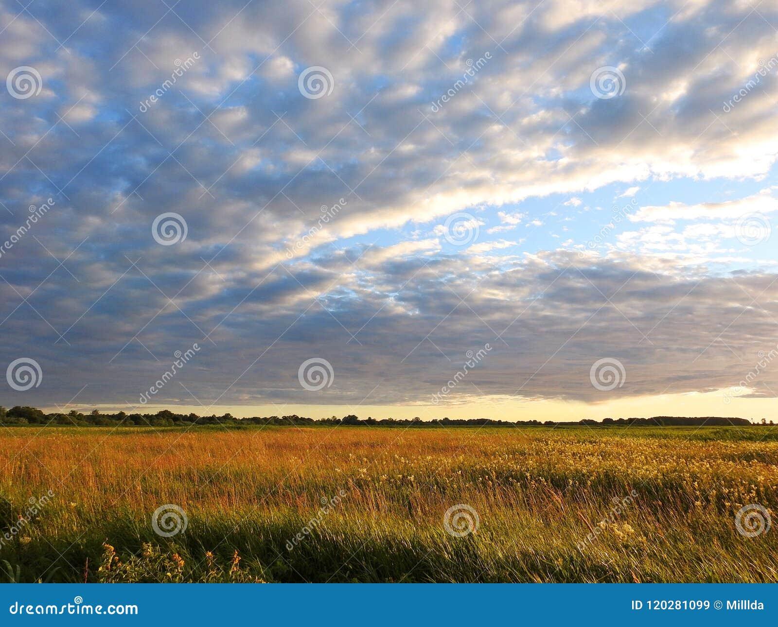 Field and beautiful cloudy sky, Lithuania