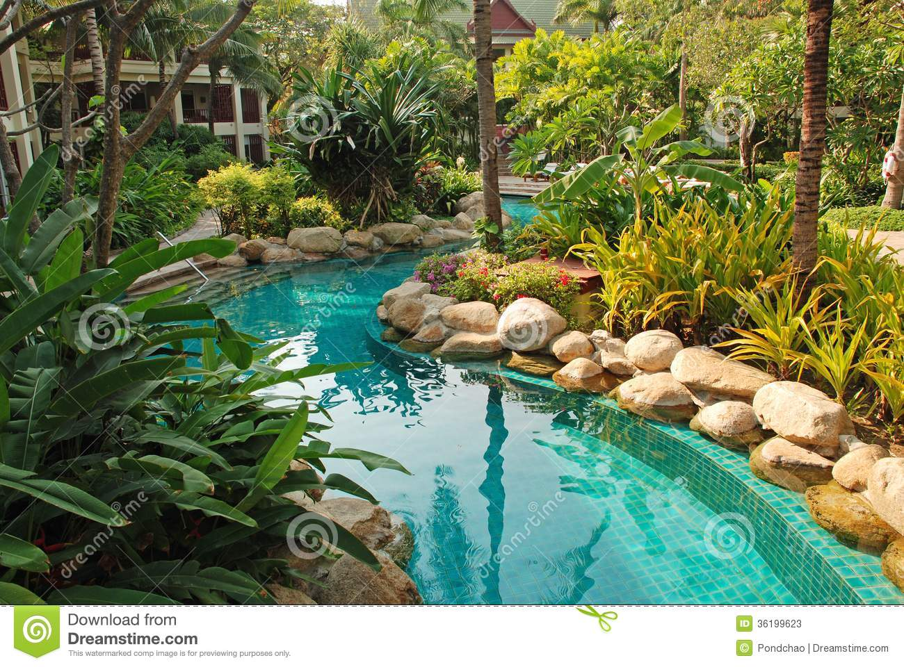 Nice swimming pool in garden stock photos image 36199623 for Garden city pool hours