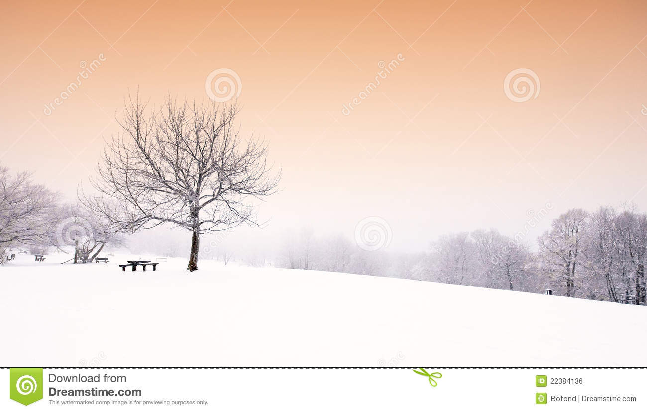 Nice Winter Scene Stock Photo. Image Of Peace, Nature