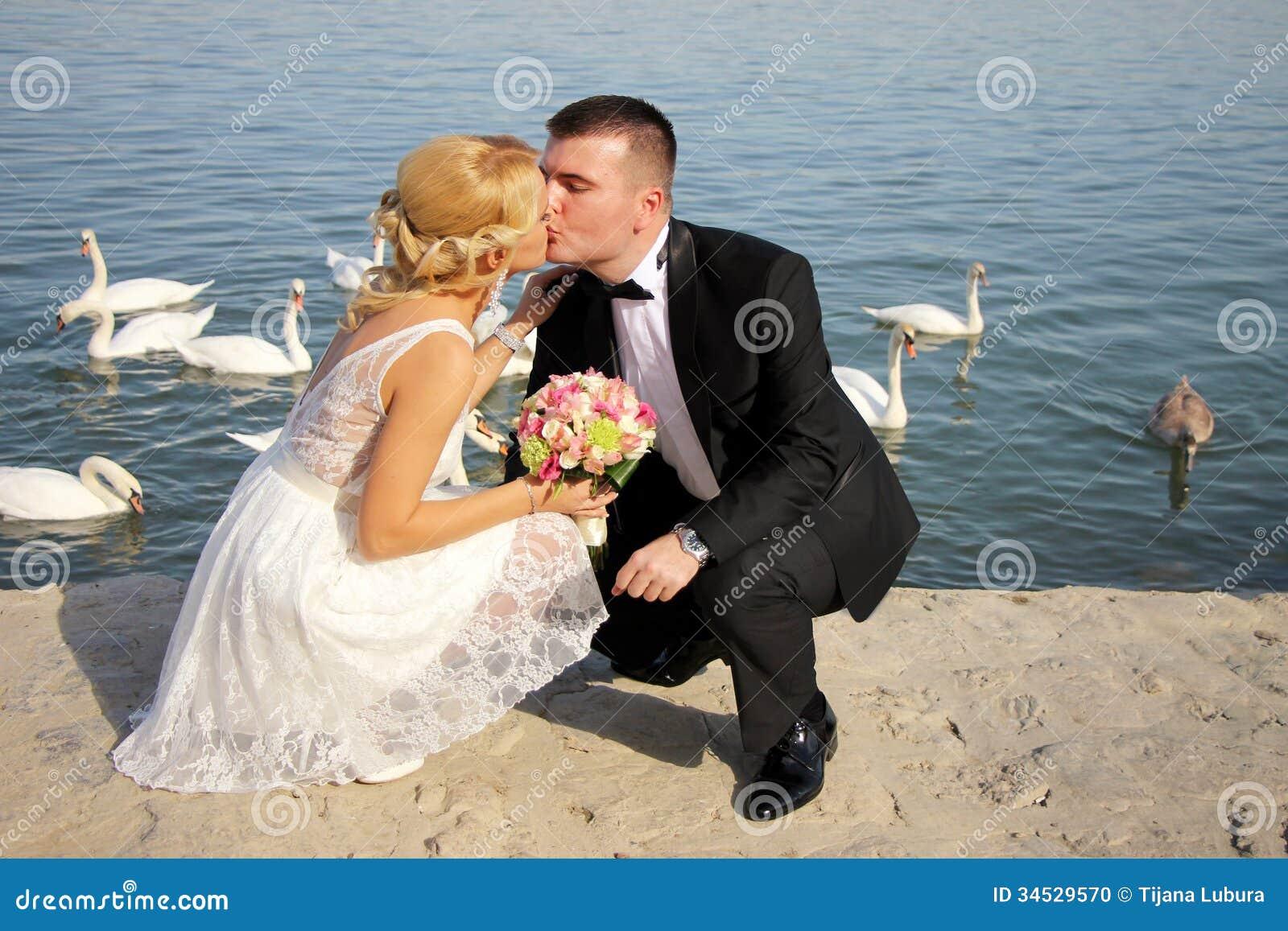 nice young wedding couple stock photo - image: 34529570