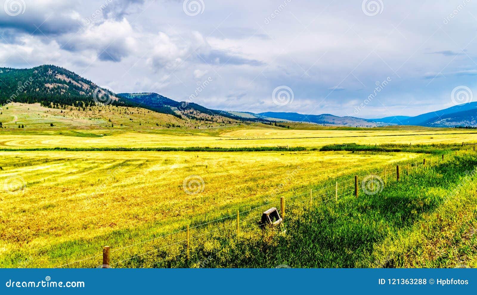 Nicola谷的大农场土地在不列颠哥伦比亚省,加拿大