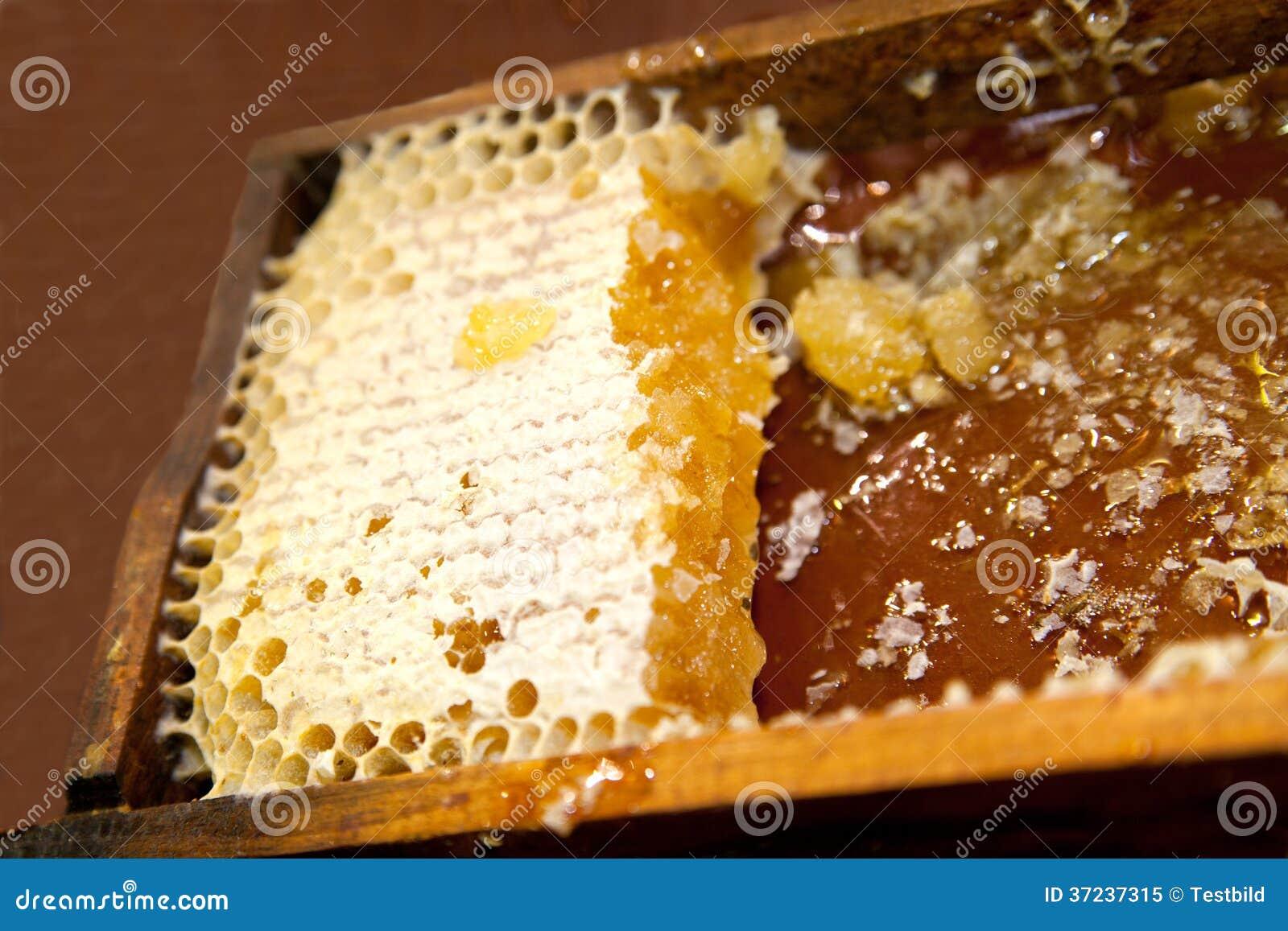 nid d 39 abeilles avec du miel et la cire photo libre de droits image 37237315. Black Bedroom Furniture Sets. Home Design Ideas