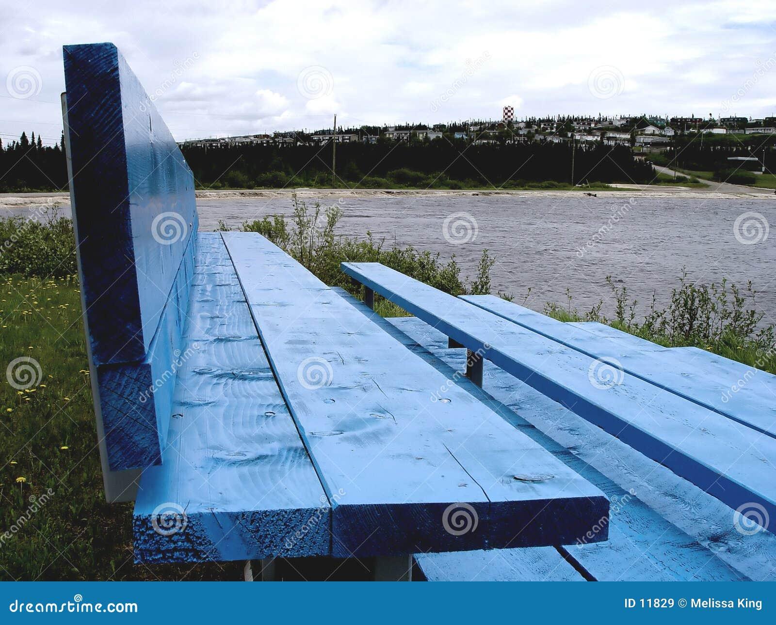 Niebieski ławki parku
