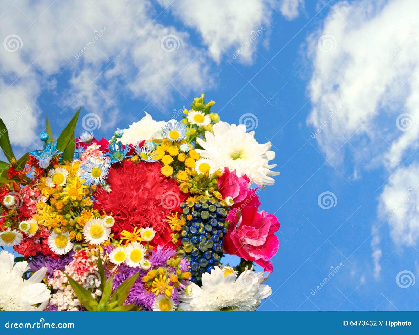 Niebieski kwitnie niebo wiosny