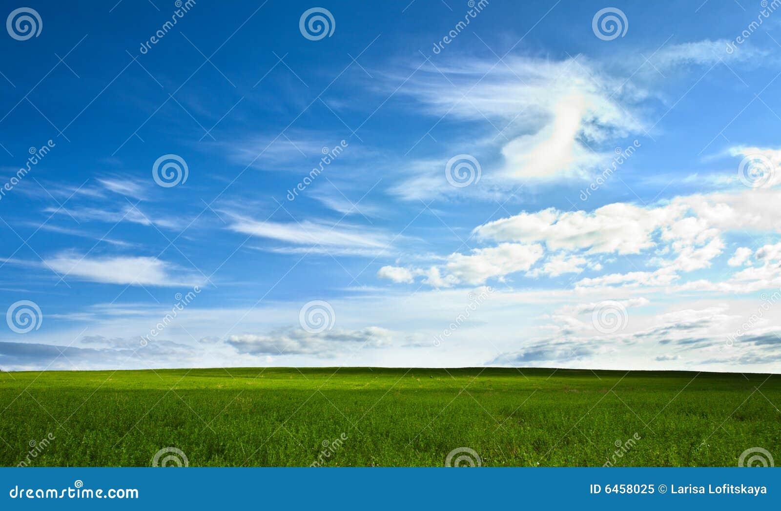 Niebieski pola zielone niebo
