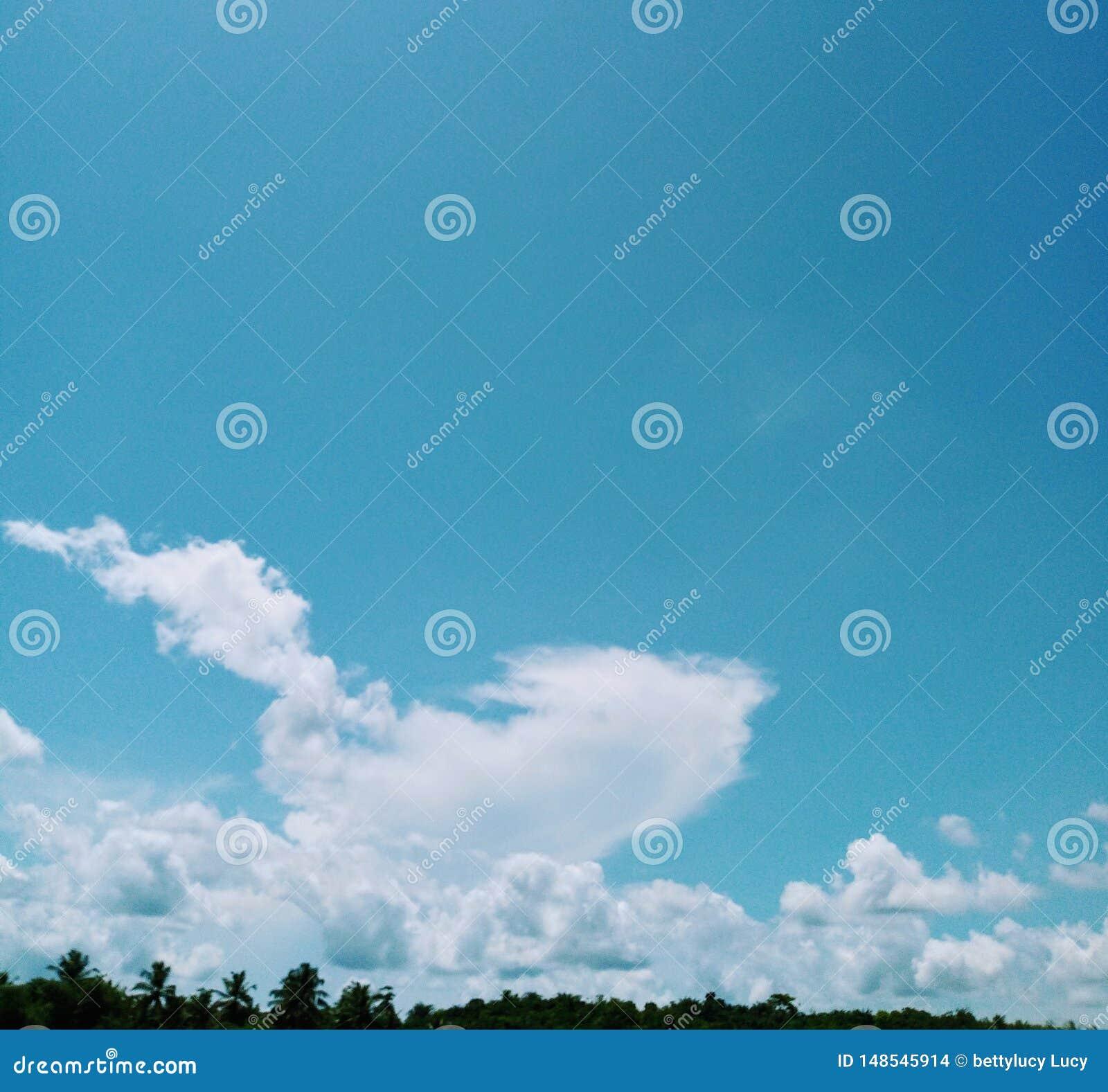 Niebieskie niebo atmosfery niebiańska natura plenerowa