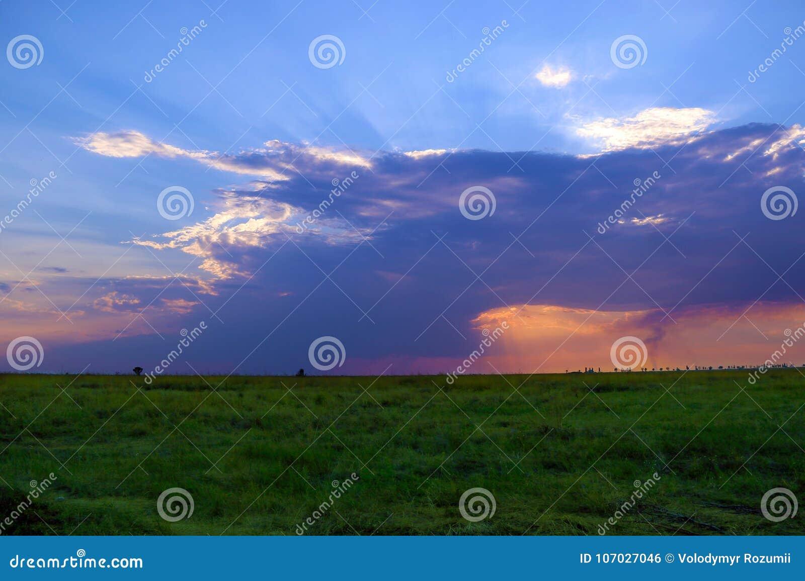 Niebieskie niebo z chmurami i słońce promieniami spada na trawie