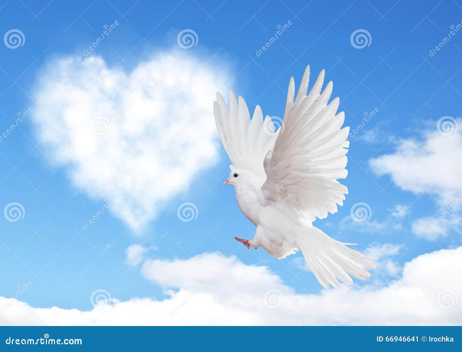 Niebieskie niebo z serce kształta gołąbką i chmurami