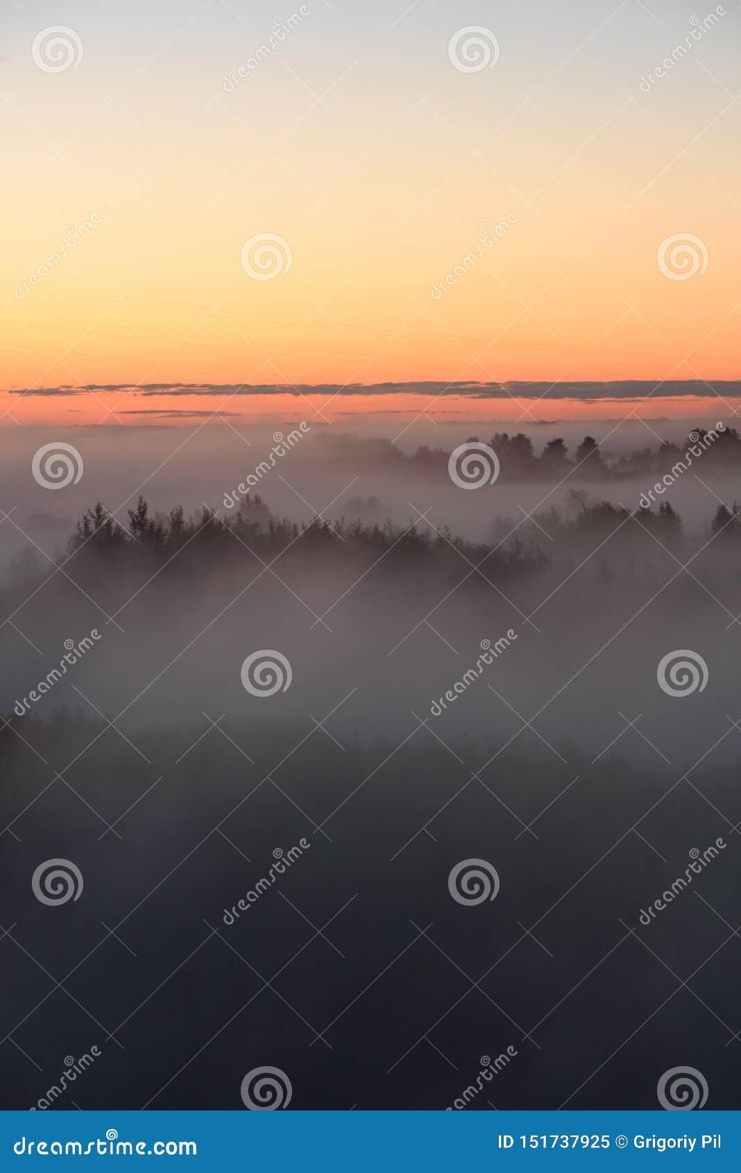 Niebla de medianoche