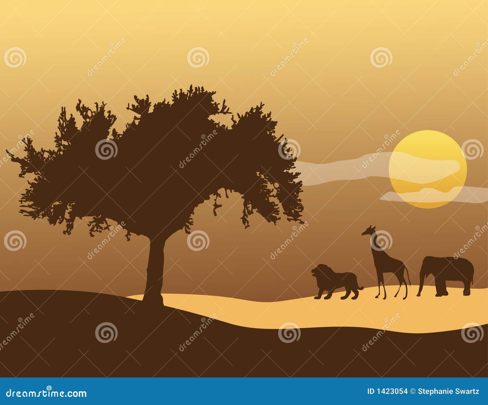 Niebo afryki