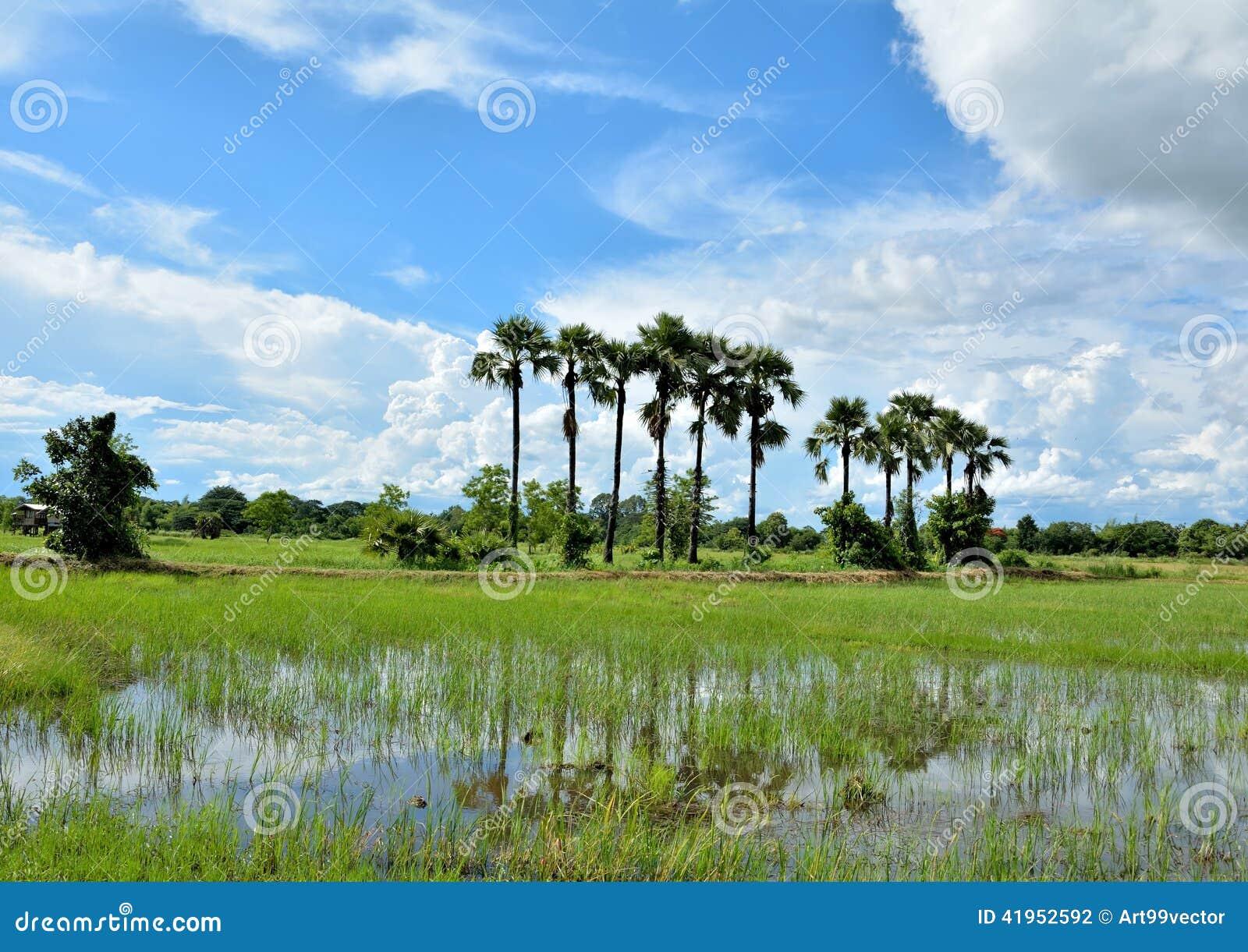 Niebo i tajlandzki kraj