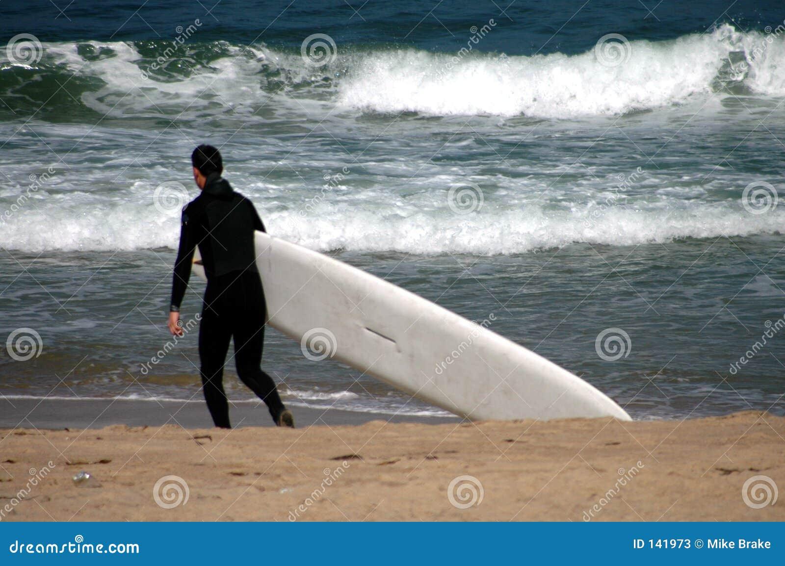 Niech będzie surfin