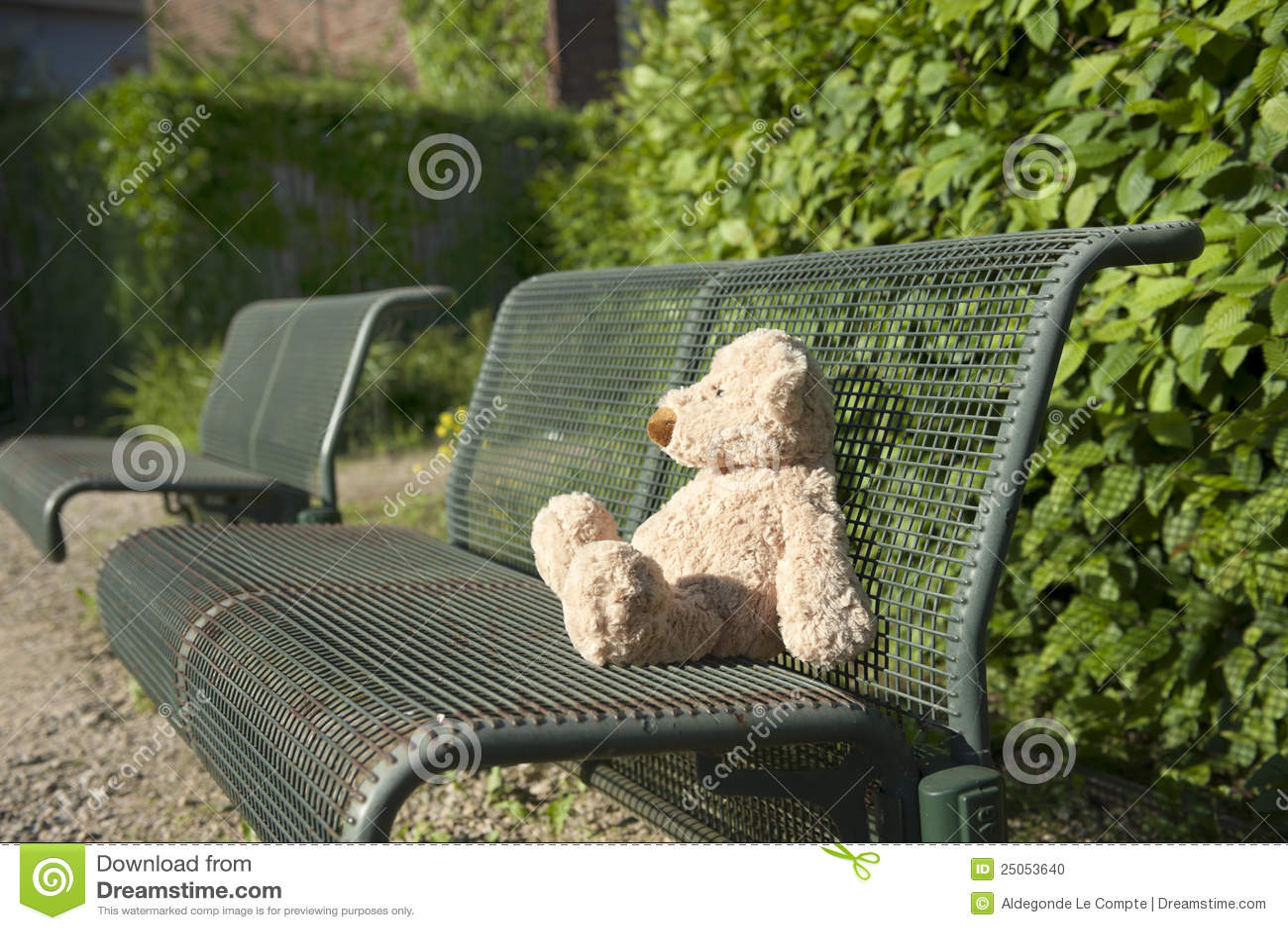 Niedźwiadkowej ławki przegrany miś pluszowy