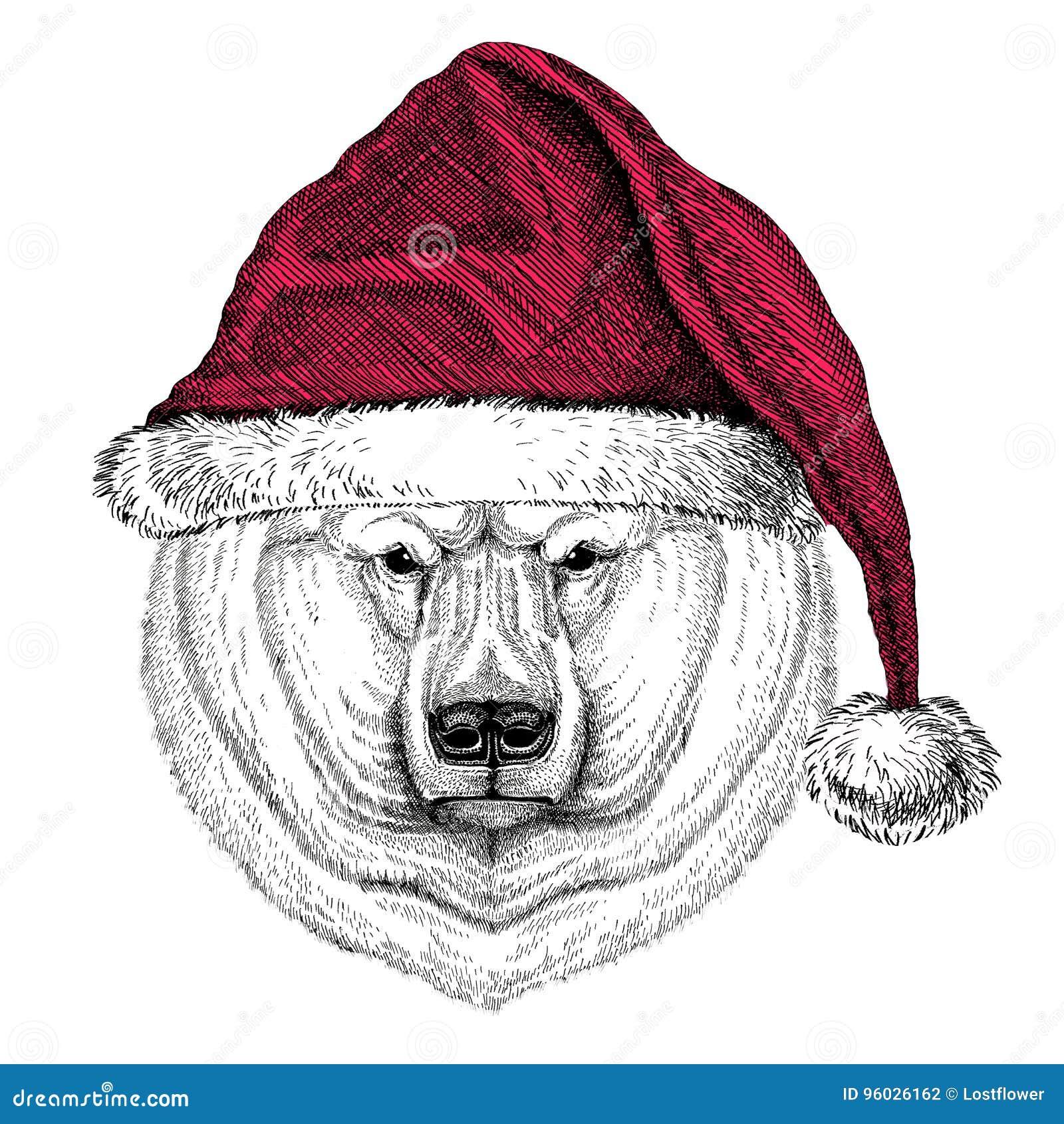 Niedźwiedzia polarnego Bożenarodzeniowy ilustracyjny dzikie zwierzę jest ubranym bożego narodzenia Santa Claus zimy kapeluszowego