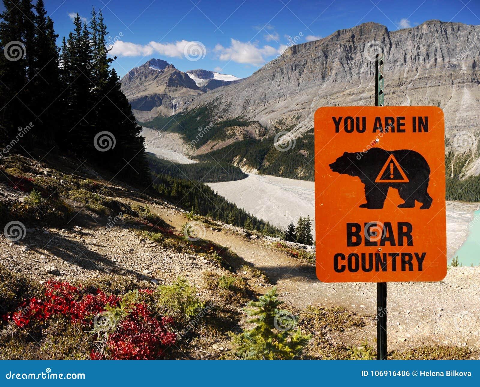 Niedźwiadkowy kraj, Kanadyjskie Skaliste góry, Kanada