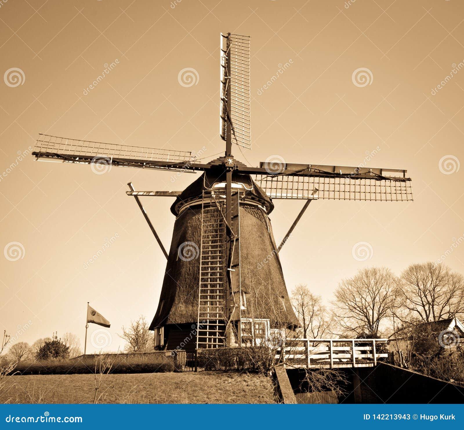 Niederländische Windmühle mit braunem Filter