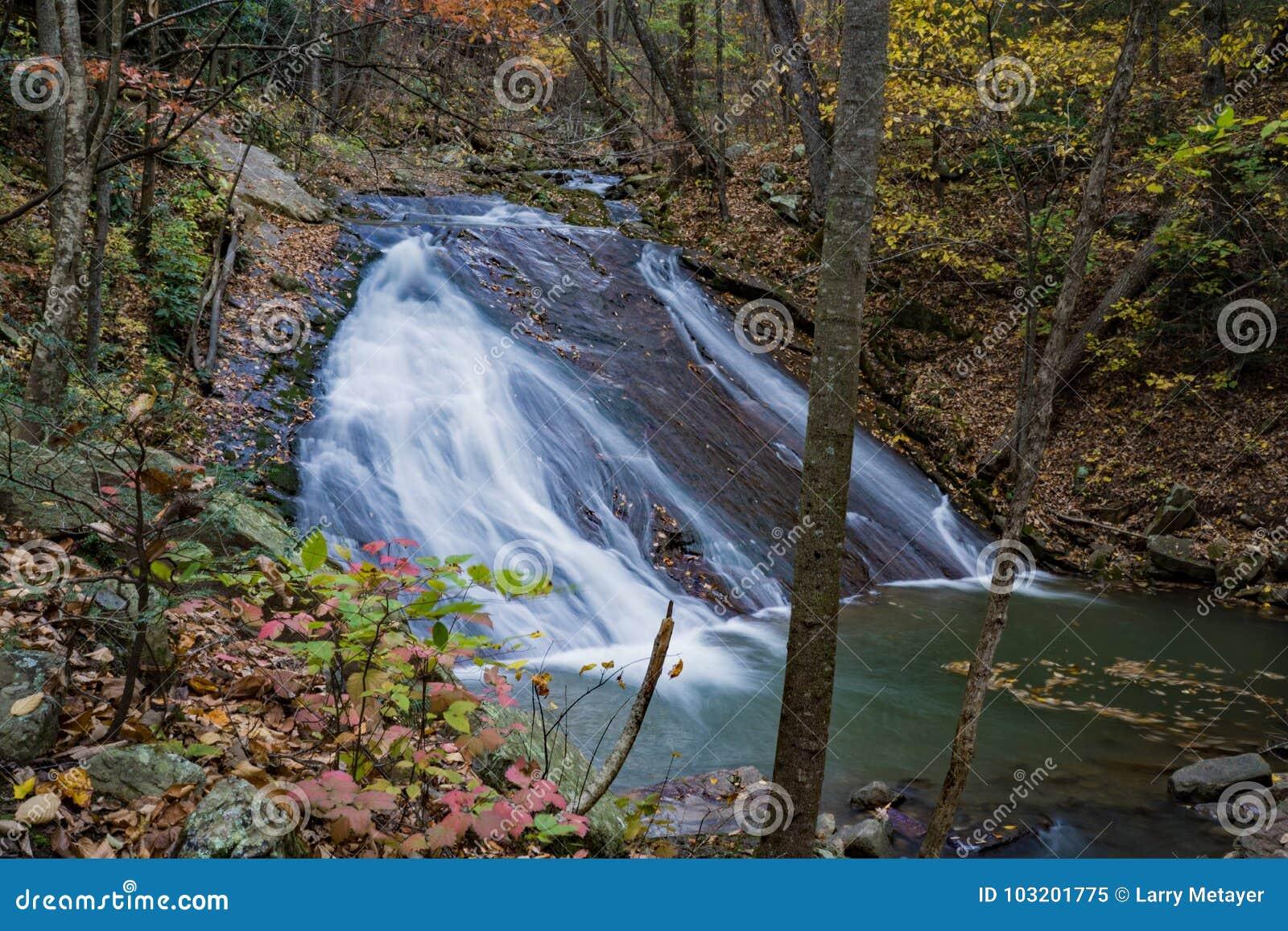 Niedrigere Fälle auf dem Brüllen des Laufnebenflusses, Jefferson National Forest, USA