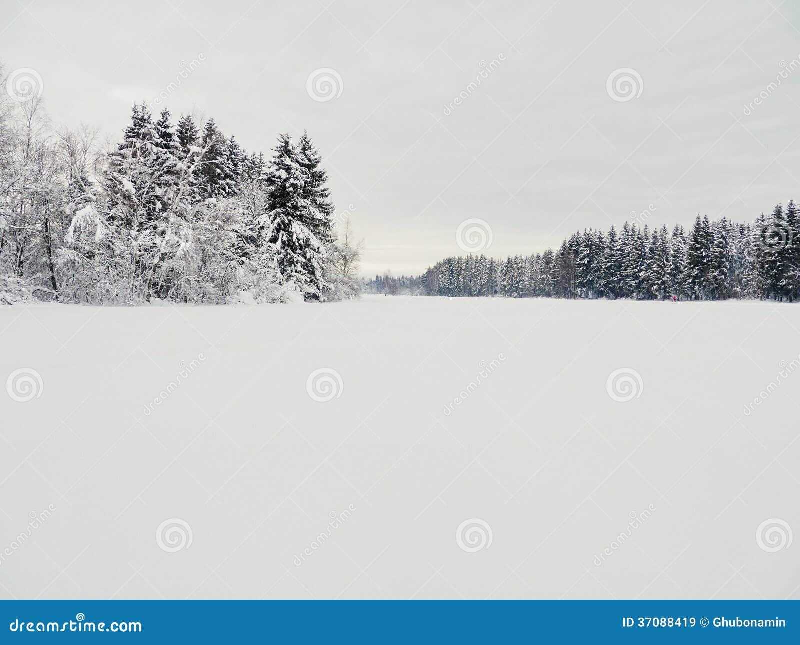 Download Śnieg krajobrazowa zima obraz stock. Obraz złożonej z christmas - 37088419