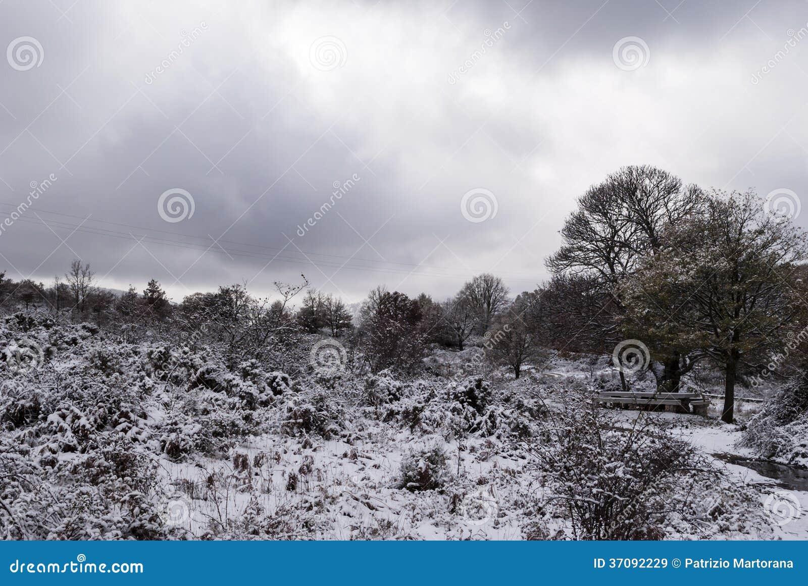 Download Śnieg w Sardinia obraz stock. Obraz złożonej z wierzchołek - 37092229