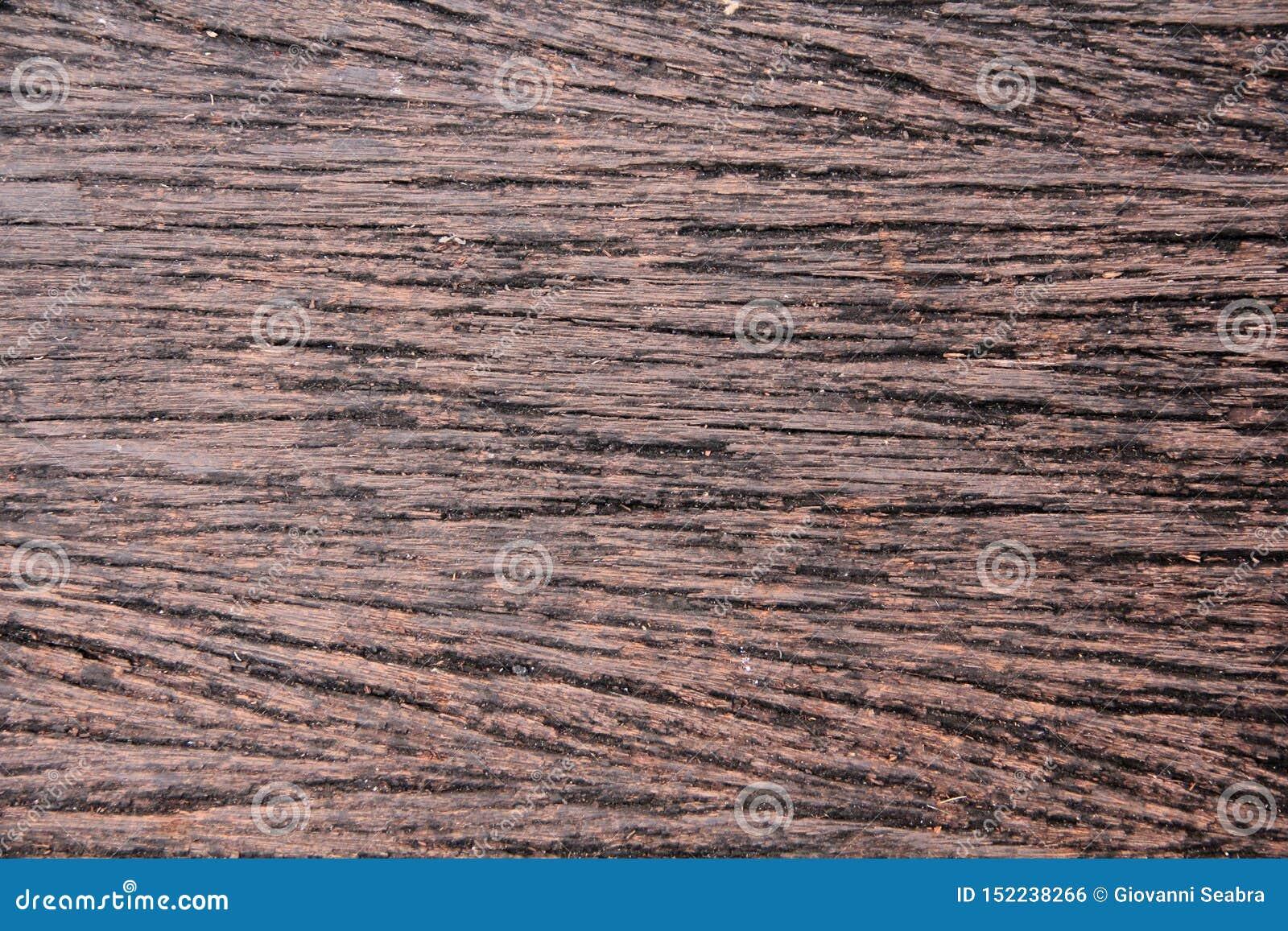 Nieociosany naturalny drewniany tekstury brąz