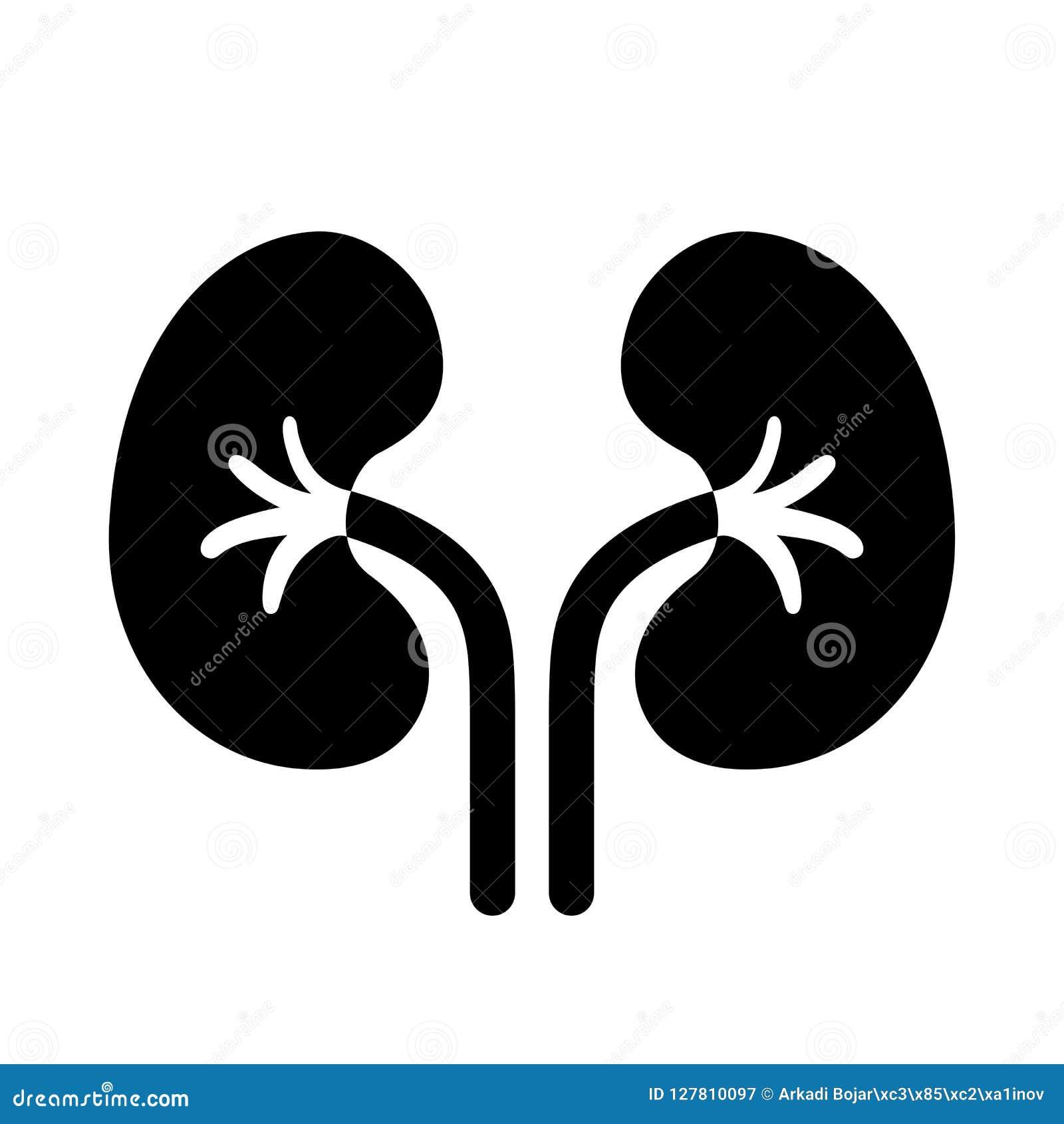 Nierenvektorpiktogramm