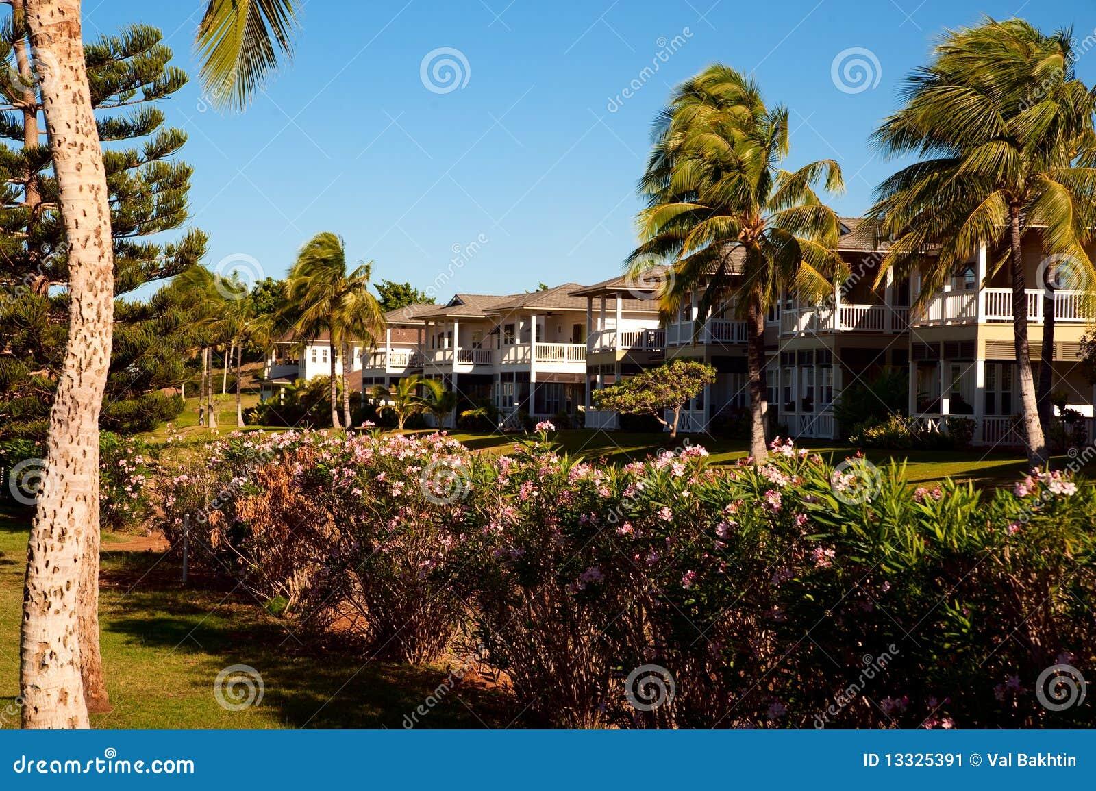 Nieruchomości hawajczyka real